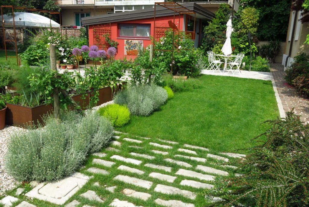 santolina giardino erbe
