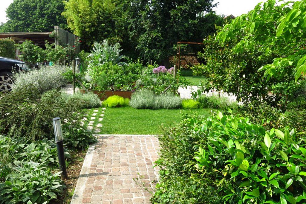 giardino con erbe aromatiche belle